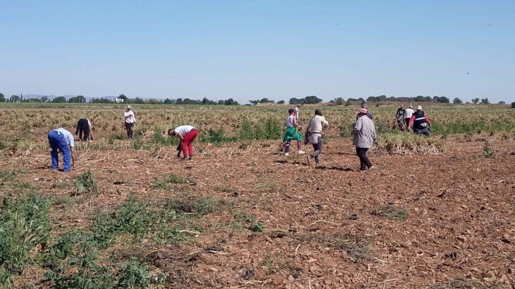 LOS TRABAJADORES SIGUEN PAGANDO LAS CONSECUENCIAS DE LA FIRMA DE UN MAL CONVENIO COLECTIVO DE AGRICULTURA